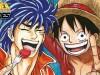 Exposición One Piece – Toriko | XIX Salón del Manga deBarcelona